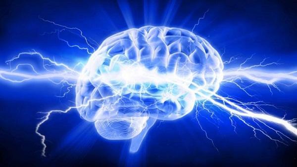 Kết quả hình ảnh cho tế bào não bo daikynguyen