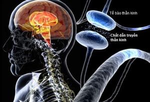 Chẩn đoán và điều trị bệnh Parkinson